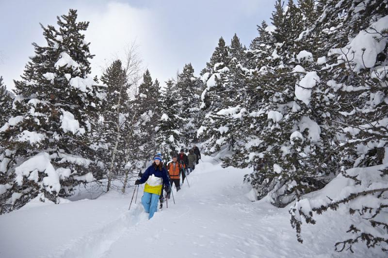 Résidence Andorra Bordes d'Envalira